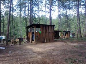 EZLN-poblado-1-de-agosto-600x450